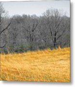 Grass Of Fire Metal Print