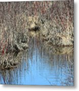 Grass Reflections Metal Print