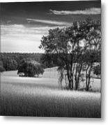 Grass Safari-bw Metal Print