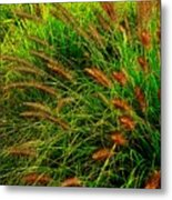Grasses In The Verticle Metal Print