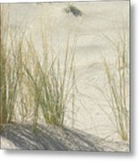 Grasses On The Beach Metal Print