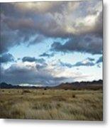 Grasslands Near Portal Metal Print