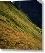 Grassy Before The Top Of The Rocky Hill Metal Print