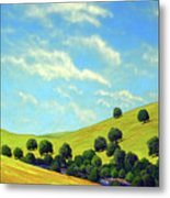 Grassy Hills At Meadow Creek Metal Print