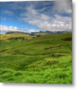 Grassy Meadow South Iceland Metal Print