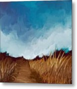 Grassy Path Metal Print