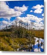 Grassy Waters 3 Metal Print