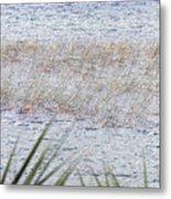 Grassy Waters Metal Print