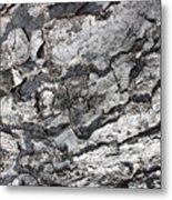 Gray Bark Metal Print