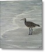 Gray Day Metal Print by JoAnn Wheeler