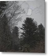 Gray Skies Over The Pines Metal Print