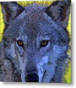 Gray Wolf Portrait Metal Print