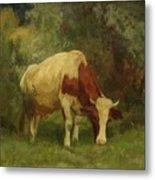 Grazing Cow Metal Print