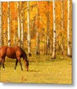 Grazing Horse In The Autumn Pasture Metal Print