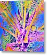 Great Abaco Palm Metal Print