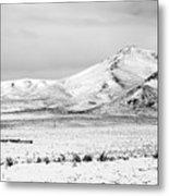 Great Basin Metal Print