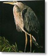 Great Blu Heron Metal Print
