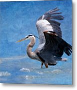 Great Blue Heron  Metal Print by Betty LaRue