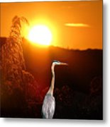 Great Blue Sunset Metal Print