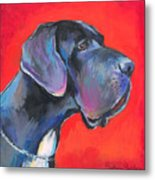 Great Dane Painting Metal Print by Svetlana Novikova