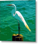 Great Egret Emerald Sea Metal Print
