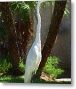 Great Egret Just Strutting Impressionism 1 Metal Print