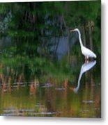 Great Egret Summer Pond Metal Print