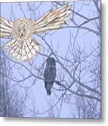 Great Gray Owl Together Metal Print