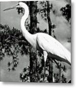Great Heron Metal Print