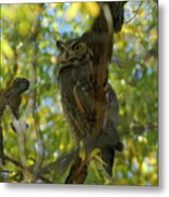 Great Horned Majesty Metal Print