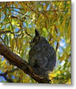 Great Horned Owl 2 Metal Print