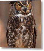 Great Horned Owl Digital Oil Metal Print