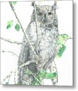 Great Horned Owl Perched In A Tree Metal Print