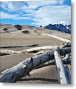 Great Sand Dunes National Park Driftwood Landscape Metal Print