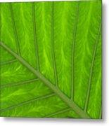 Green Abstract No. 4 Metal Print