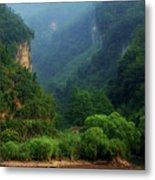 Green Along The Yangtze Metal Print