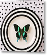 Green And Black Butterfly On Plate Metal Print