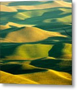 Green And Gold Acres Metal Print