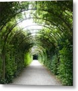Green Arbor Of Mirabell Garden Metal Print
