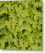 Green Curtain Metal Print