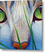 Green Eyes Metal Print by Brian  Commerford