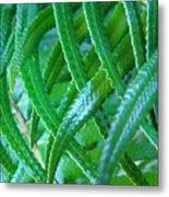 Green Forest Fern Fronds Art Prints Baslee Troutman Metal Print
