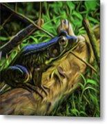 Green Frog On A Brown Log Metal Print