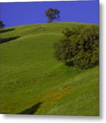 Green Hill With Poppies Metal Print