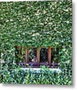 Green Ivy Window  Metal Print