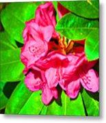 Green Leafs Of Pink Metal Print