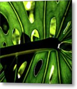 Green Leave With Holes Metal Print