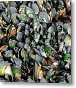 Green Lipped Muscles Metal Print