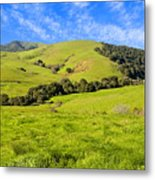 Green Meadow Santa Ynez Valley Ca Metal Print