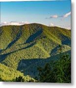 Green Mountainside Metal Print